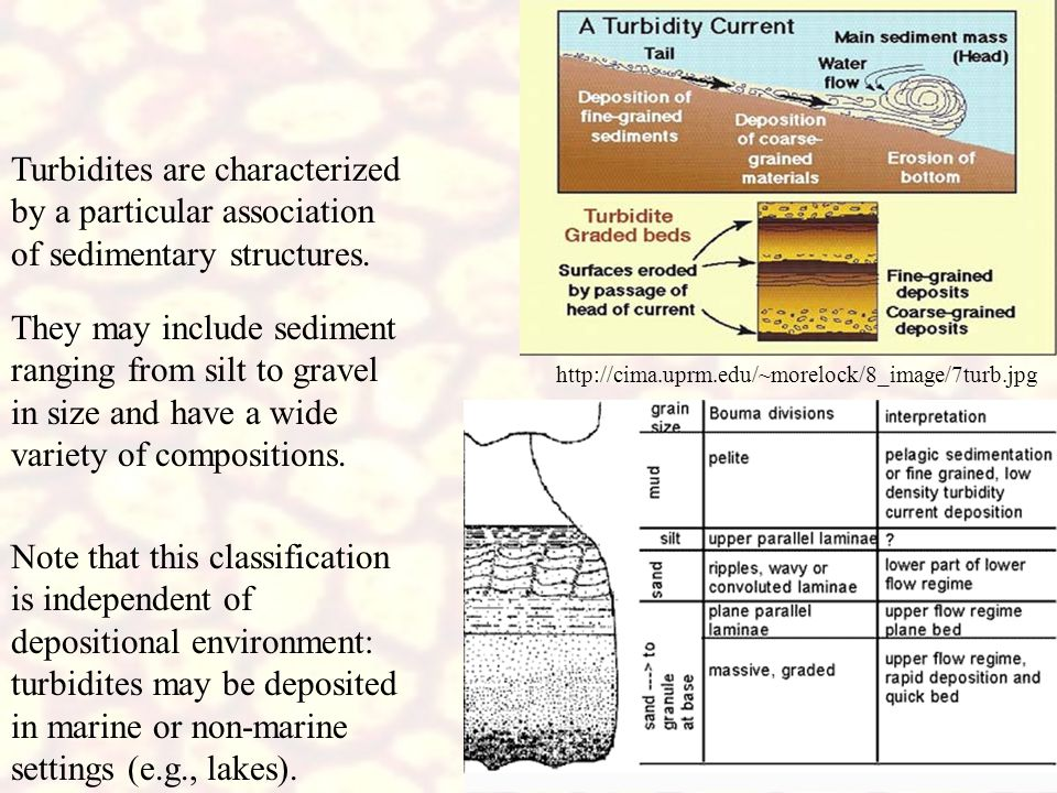 http://cima.uprm.edu/~morelock/8_image/7turb.jpg Turbidites are characterized by a particular association of sedimentary structures.