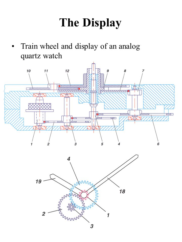 The Display Train wheel and display of an analog quartz watch
