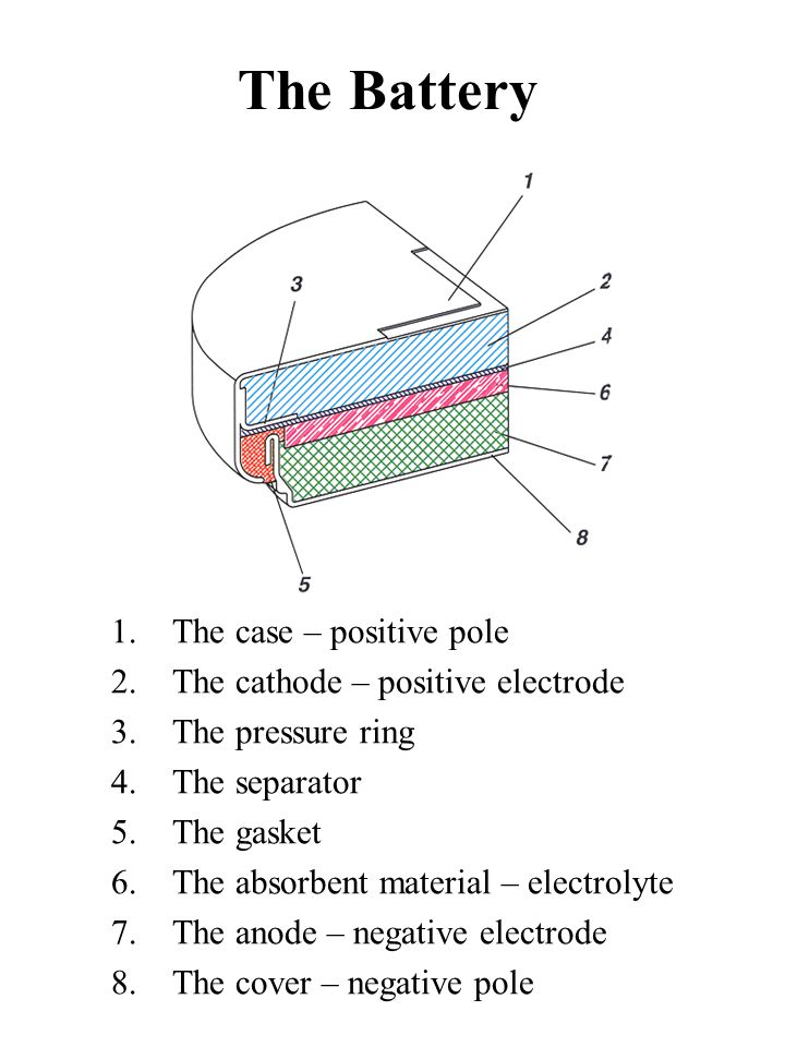 The Battery The case – positive pole The cathode – positive electrode