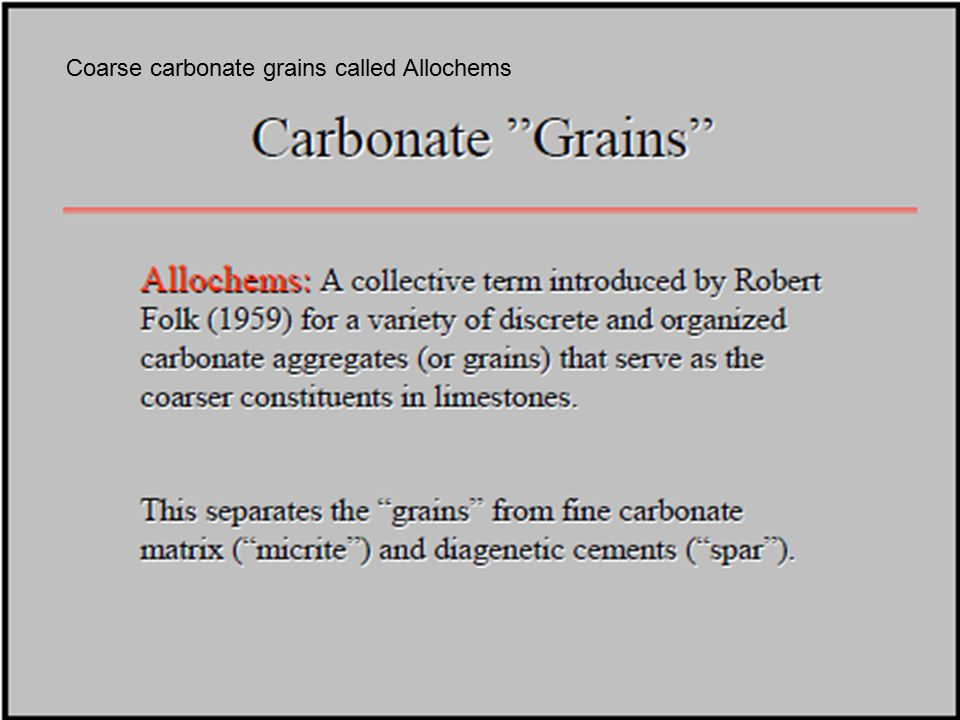 Coarse carbonate grains called Allochems