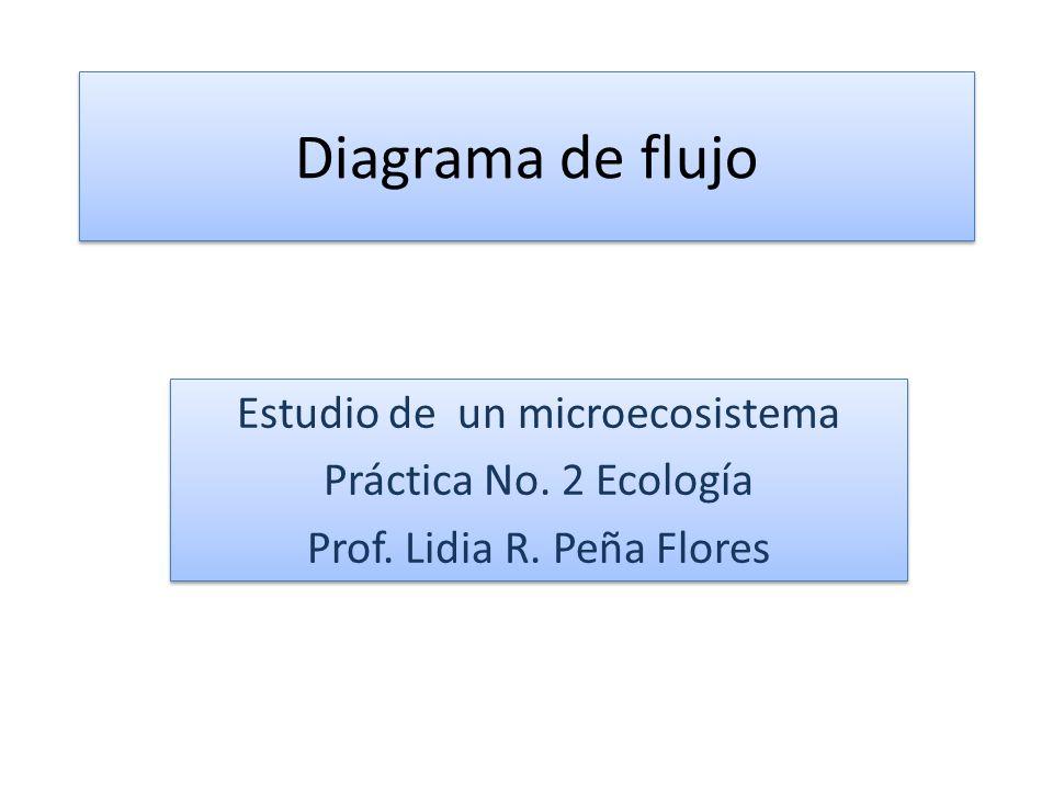Diagrama de flujo Estudio de un microecosistema