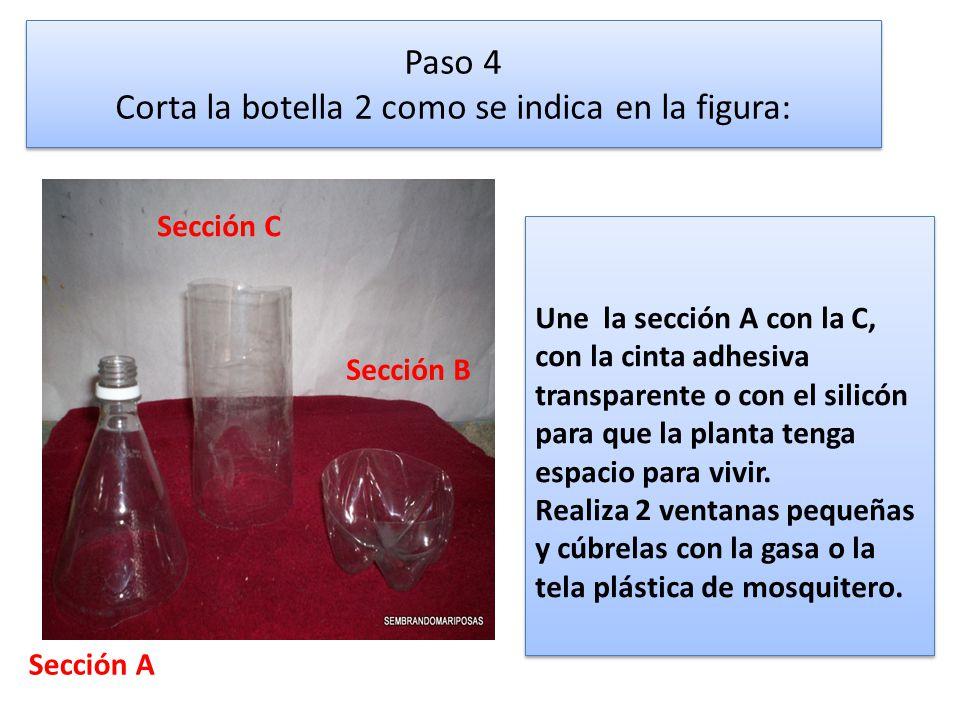 Paso 4 Corta la botella 2 como se indica en la figura: