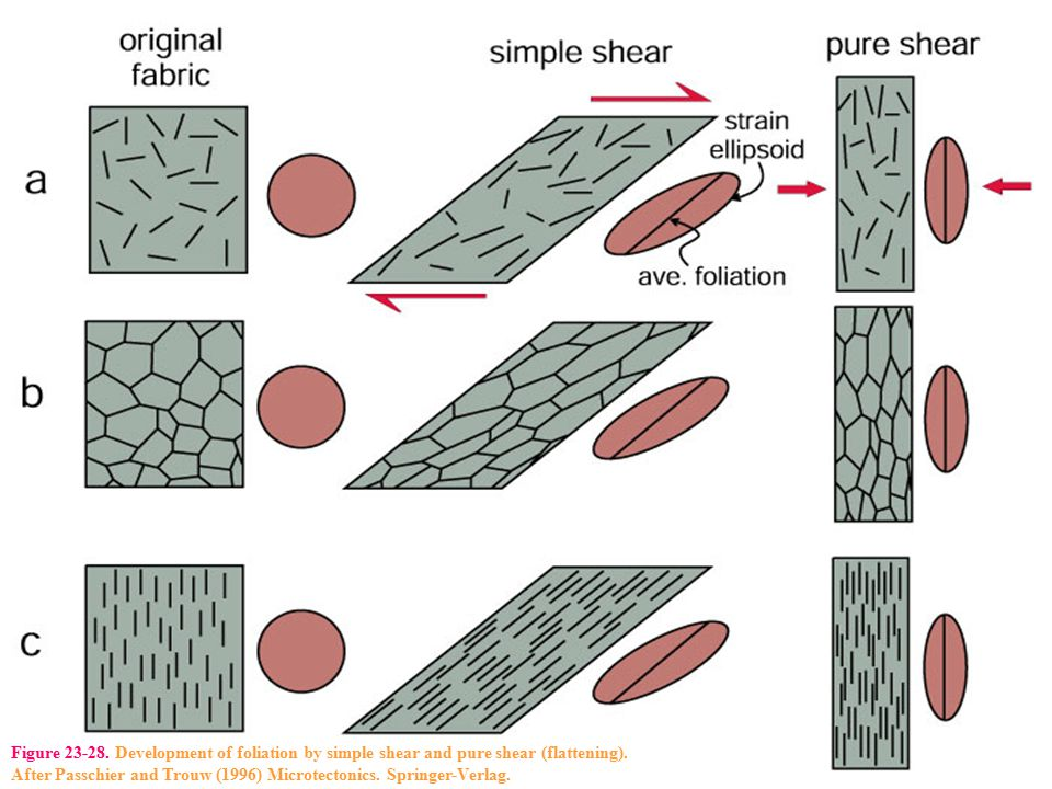 Figure 23-28. Development of foliation by simple shear and pure shear (flattening)