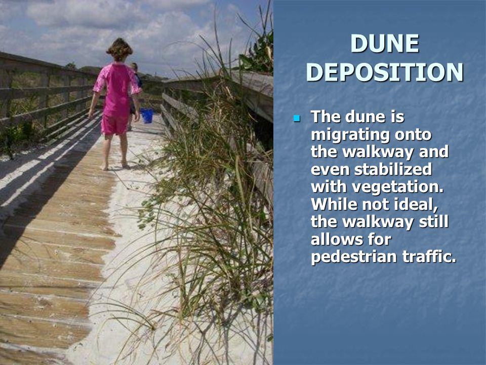 DUNE DEPOSITION