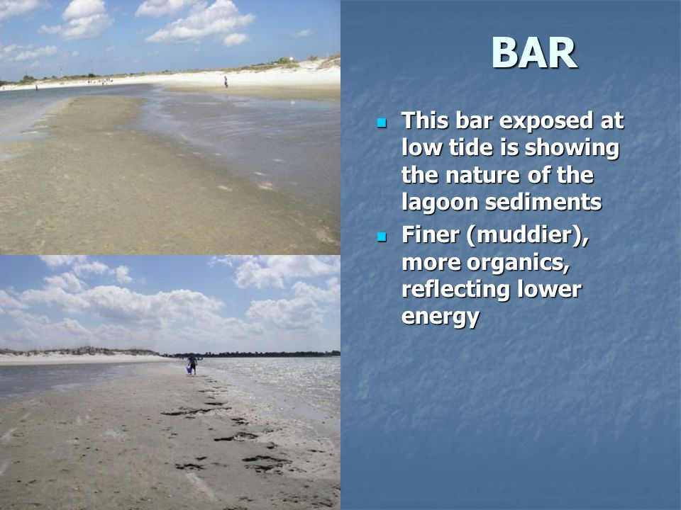 BAR This bar exposed at low tide is showing the nature of the lagoon sediments.