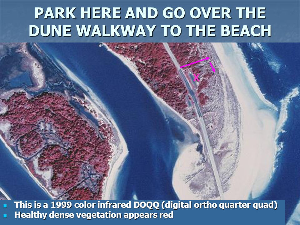 PARK HERE AND GO OVER THE DUNE WALKWAY TO THE BEACH