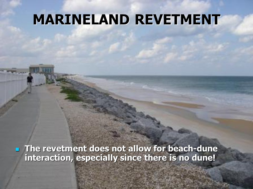 MARINELAND REVETMENT The revetment does not allow for beach-dune interaction, especially since there is no dune!