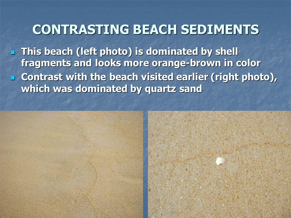 CONTRASTING BEACH SEDIMENTS
