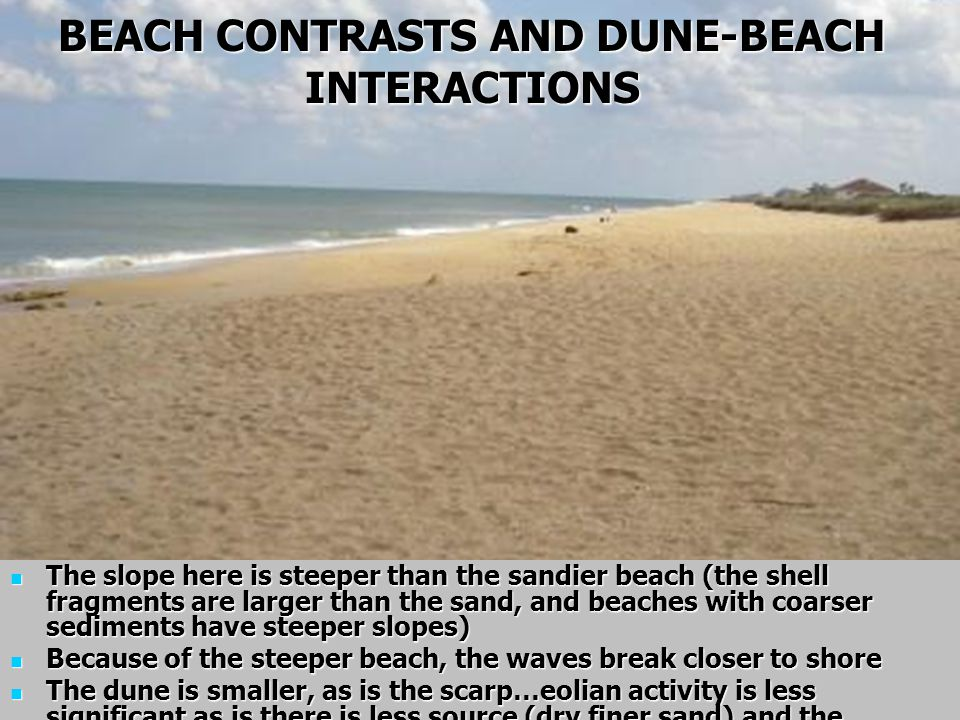 BEACH CONTRASTS AND DUNE-BEACH INTERACTIONS