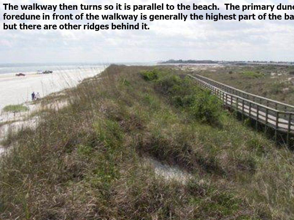 The walkway then turns so it is parallel to the beach