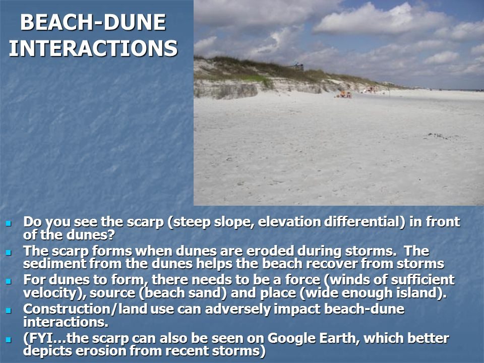 BEACH-DUNE INTERACTIONS