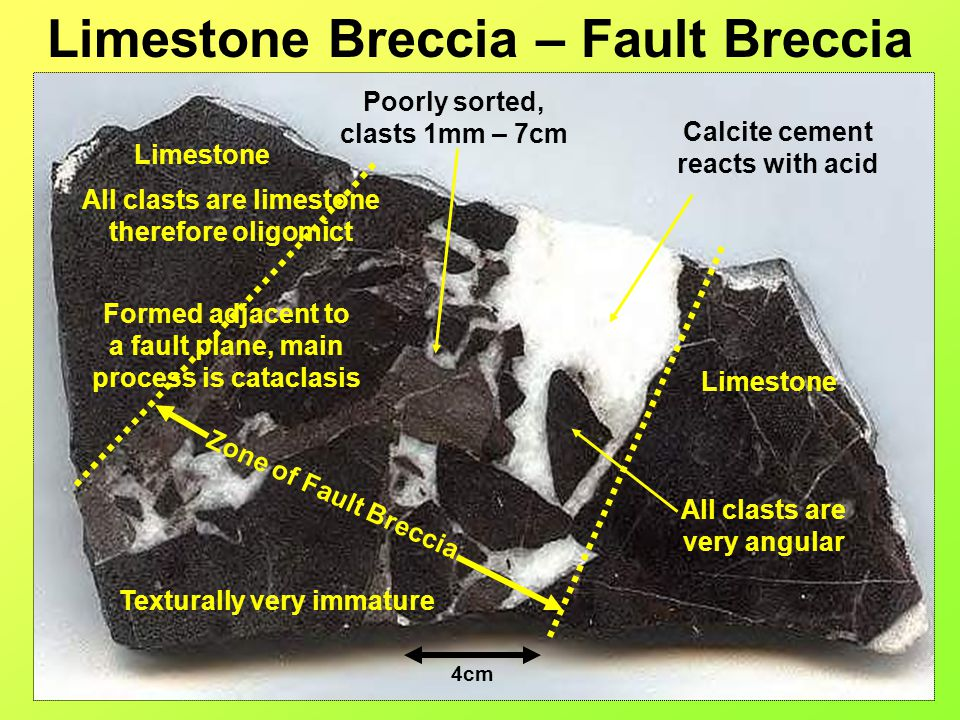 Limestone Breccia – Fault Breccia