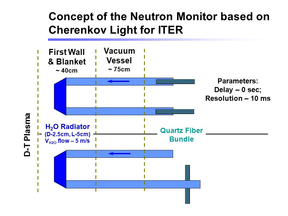 Concept of the Neutron Monitor based on Cherenkov Light for ITER