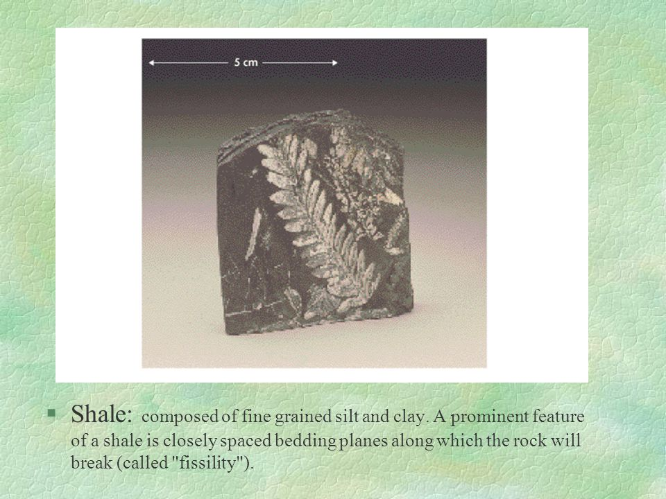 Shale: composed of fine grained silt and clay