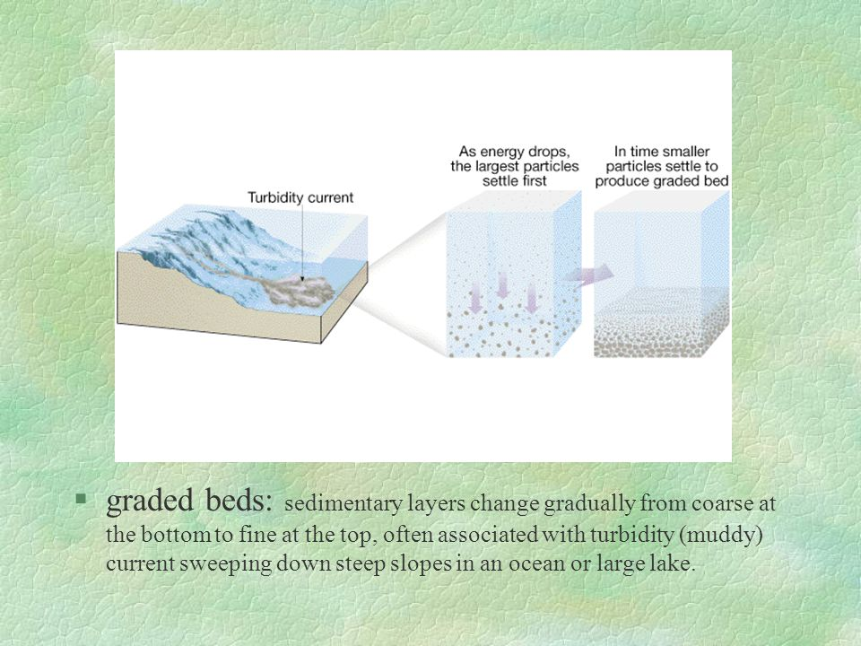 graded beds: sedimentary layers change gradually from coarse at the bottom to fine at the top, often associated with turbidity (muddy) current sweeping down steep slopes in an ocean or large lake.