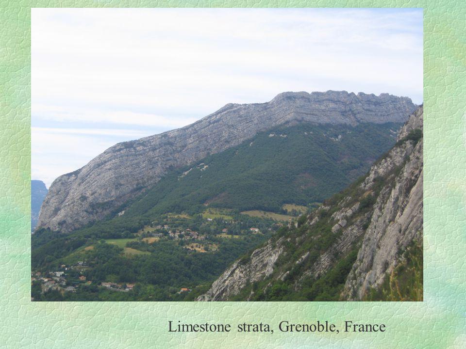 Limestone strata, Grenoble, France