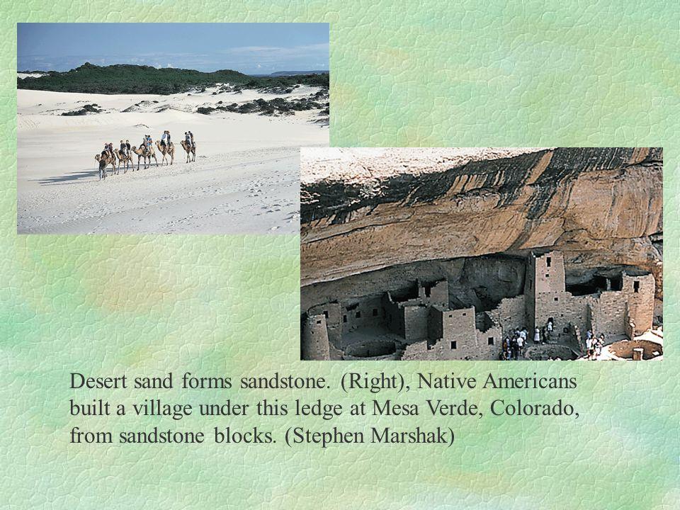 Desert sand forms sandstone