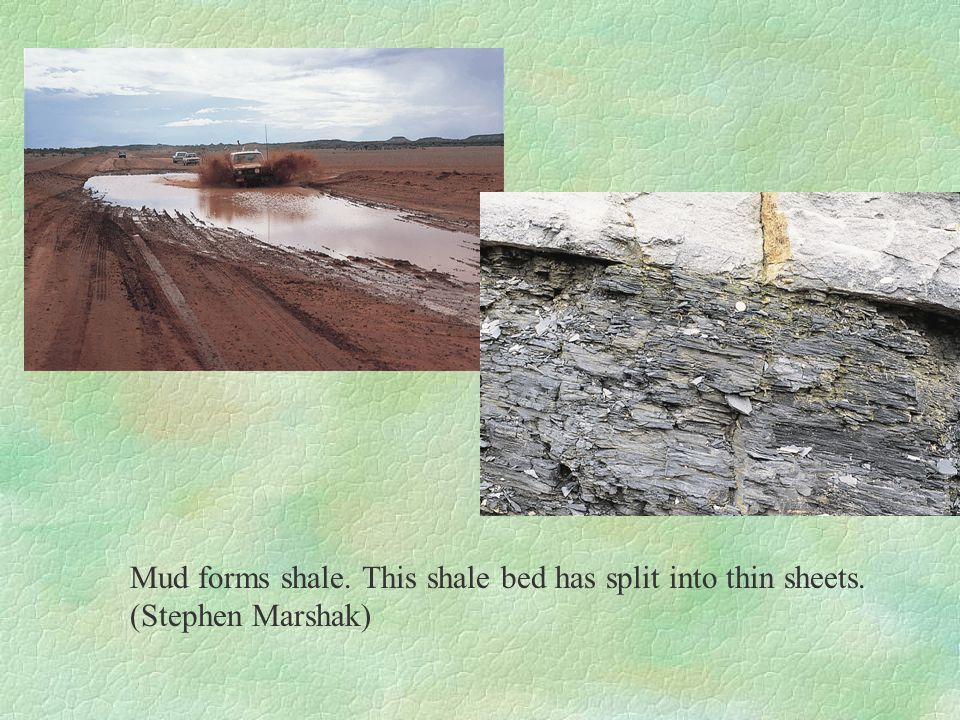 Mud forms shale. This shale bed has split into thin sheets