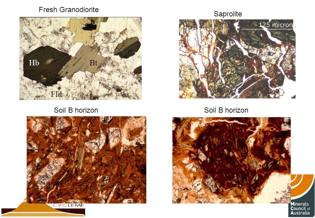 Fresh Granodiorite Saprolite Hb Bt Fld Soil B horizon Soil B horizon