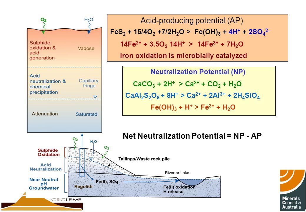Acid-producing potential (AP)