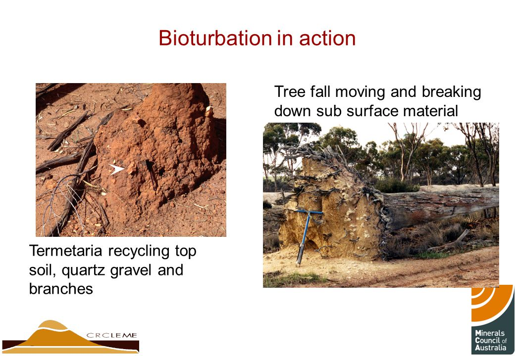 Weathering mechanisms products ppt video online download for The soil 02joy