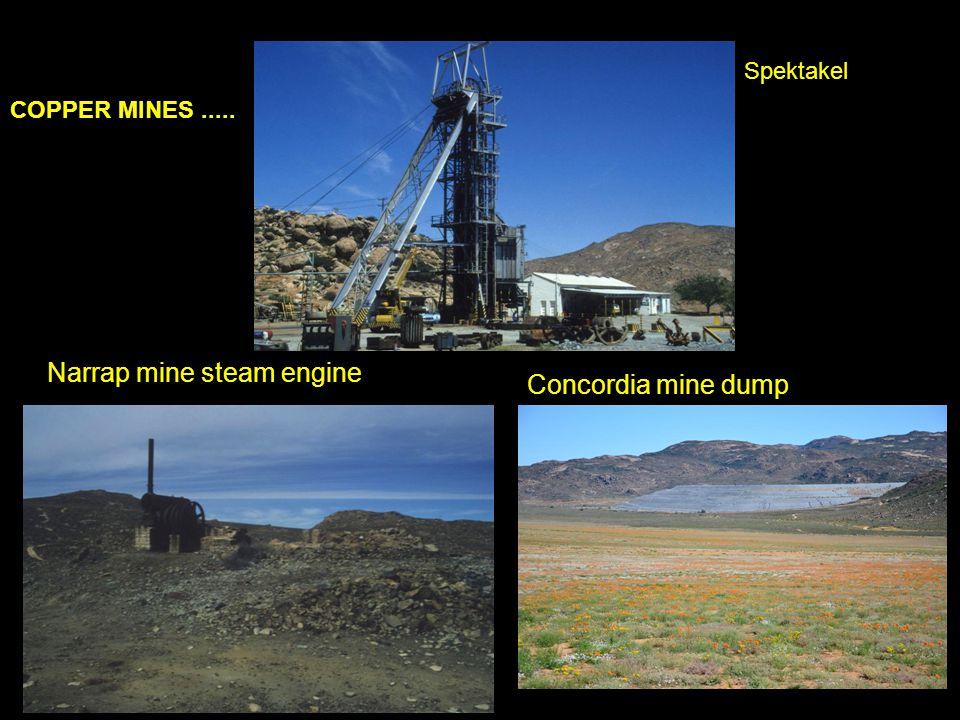 Narrap mine steam engine Concordia mine dump