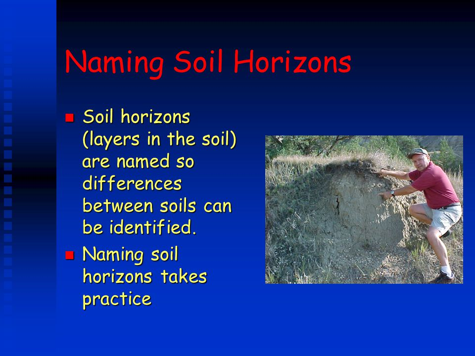 Naming Soil Horizons Soil horizons (layers in the soil) are named so differences between soils can be identified.