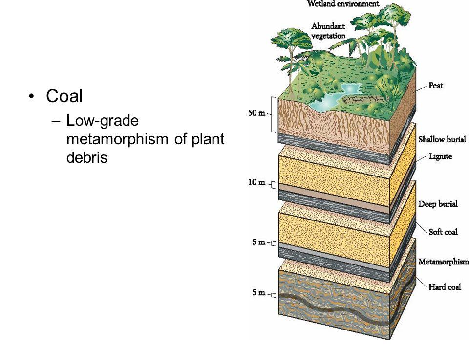 Coal Low-grade metamorphism of plant debris