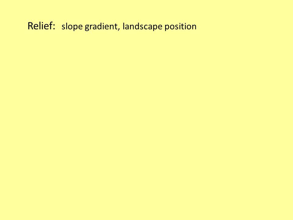 Relief: slope gradient, landscape position