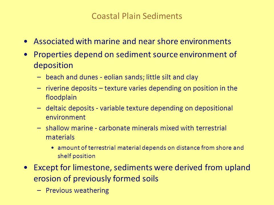Coastal Plain Sediments