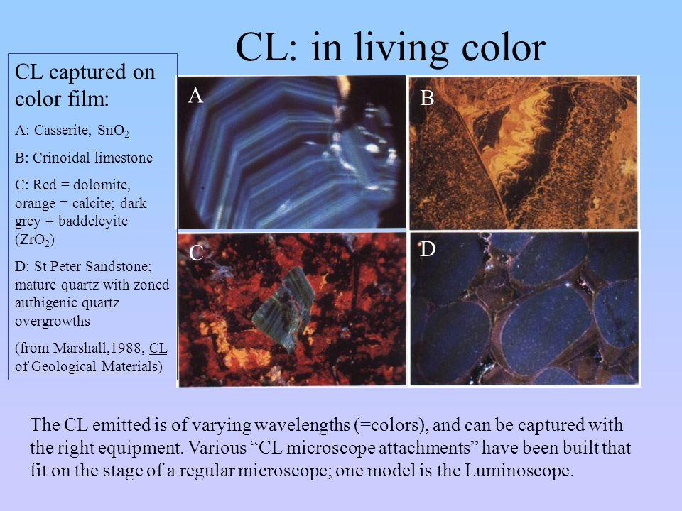 CL: in living color CL captured on color film: A B D C