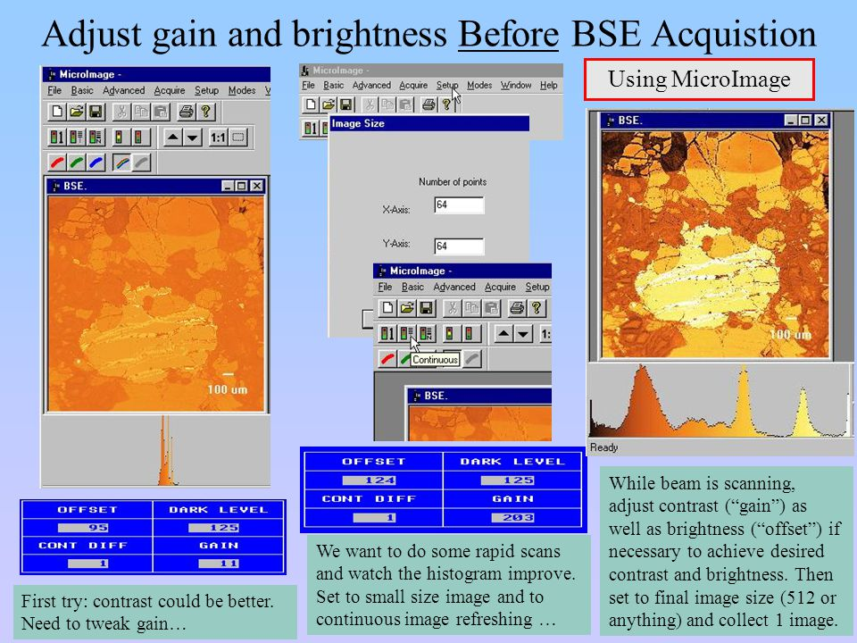 Adjust gain and brightness Before BSE Acquistion