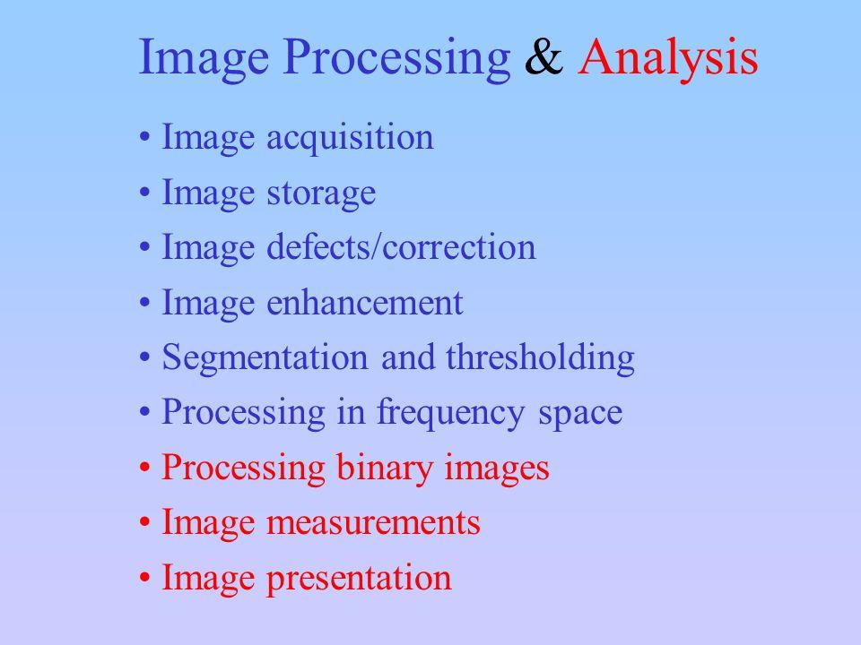 Image Processing & Analysis