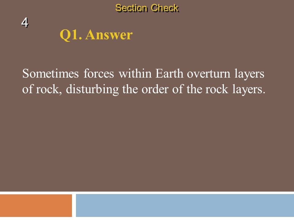 Section Check 4. Q1. Answer.