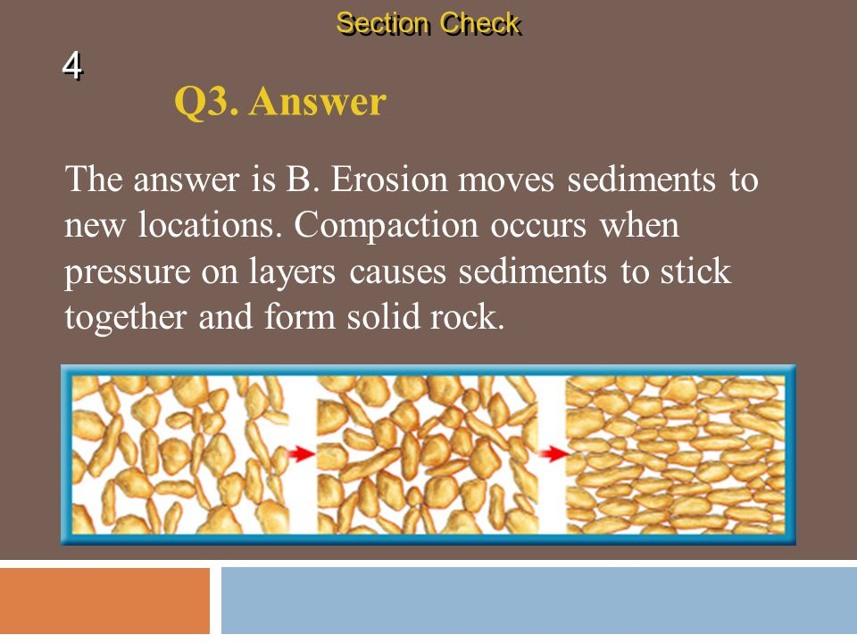 Section Check 4. Q3. Answer.