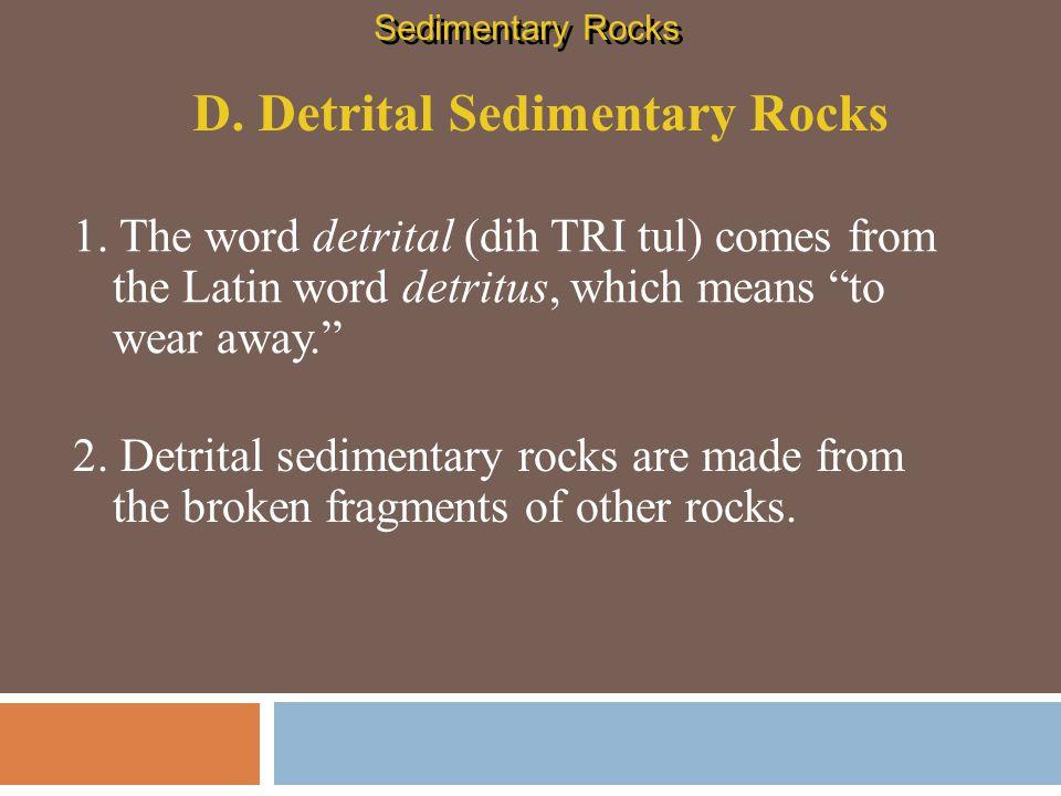 D. Detrital Sedimentary Rocks