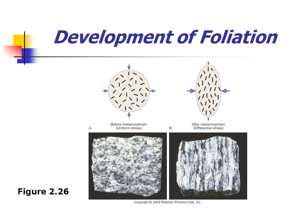 Development of Foliation