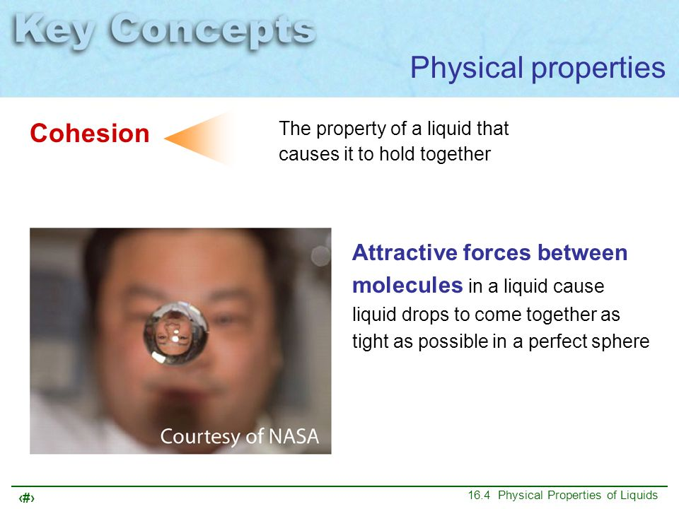 Physical properties Cohesion