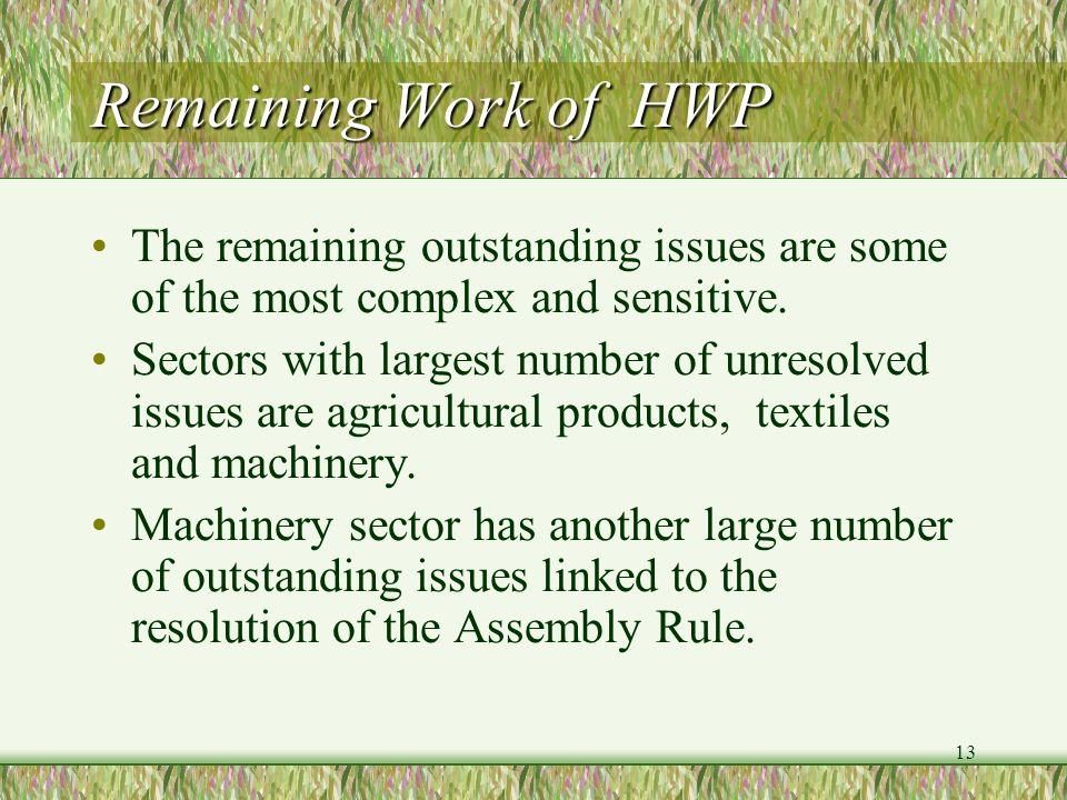 Remaining Work of HWP The remaining outstanding issues are some of the most complex and sensitive.