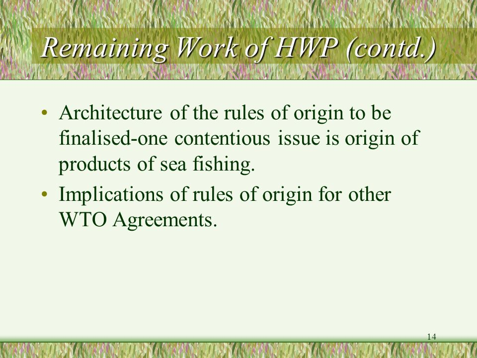 Remaining Work of HWP (contd.)