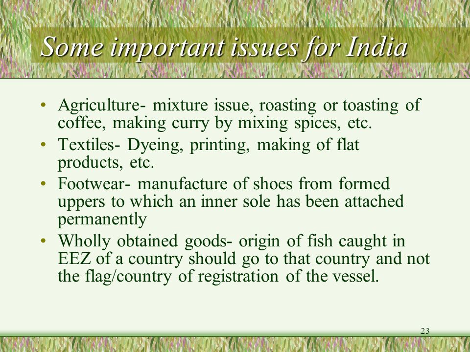 Some important issues for India