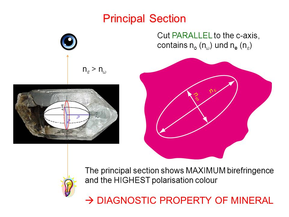 Principal Section  DIAGNOSTIC PROPERTY OF MINERAL