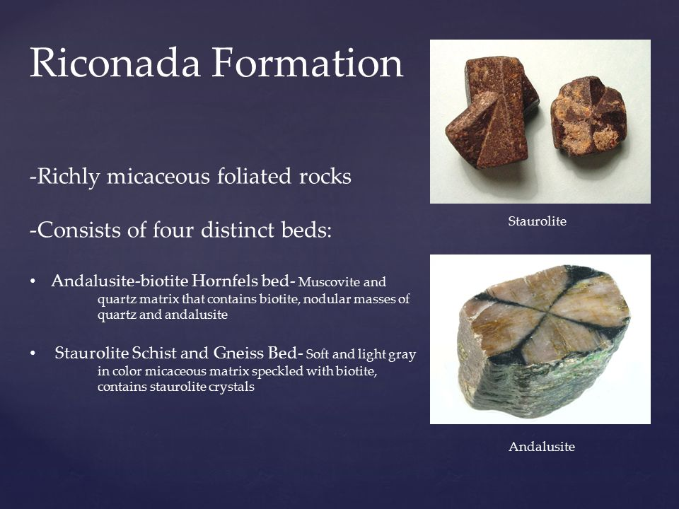 Riconada Formation -Richly micaceous foliated rocks