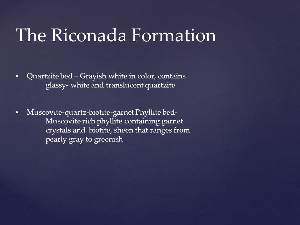 The Riconada Formation