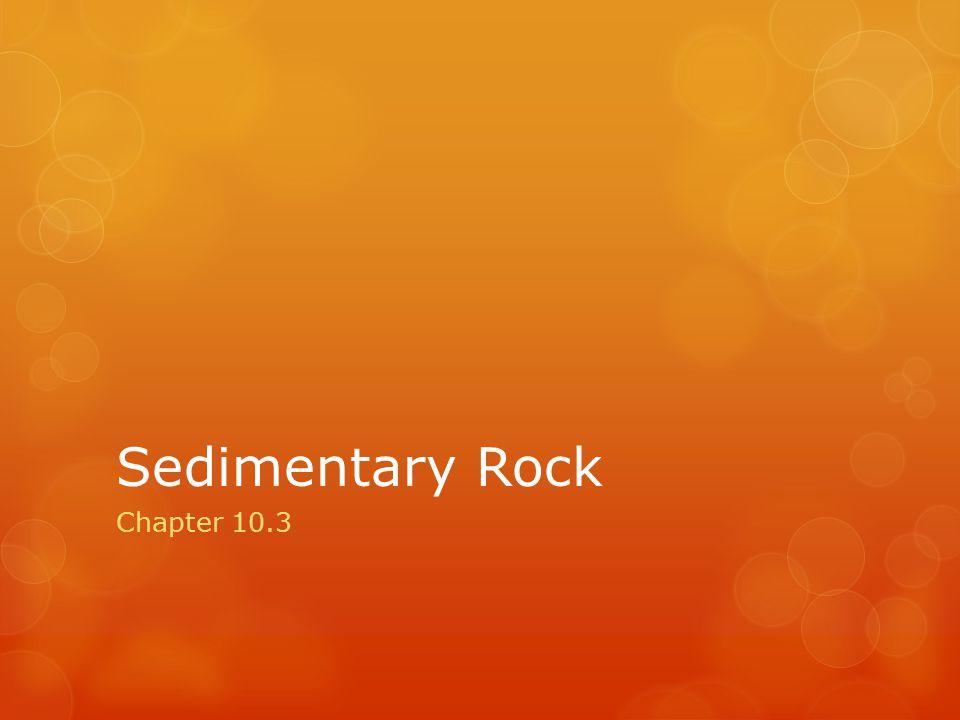 Sedimentary Rock Chapter 10.3