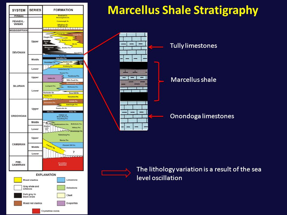 Marcellus Shale Stratigraphy