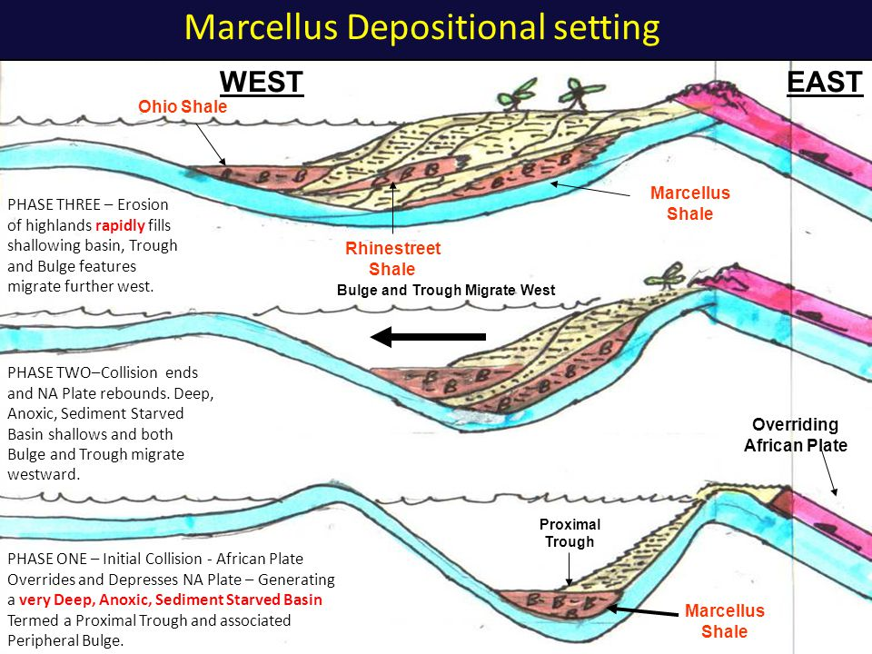 Marcellus Depositional setting