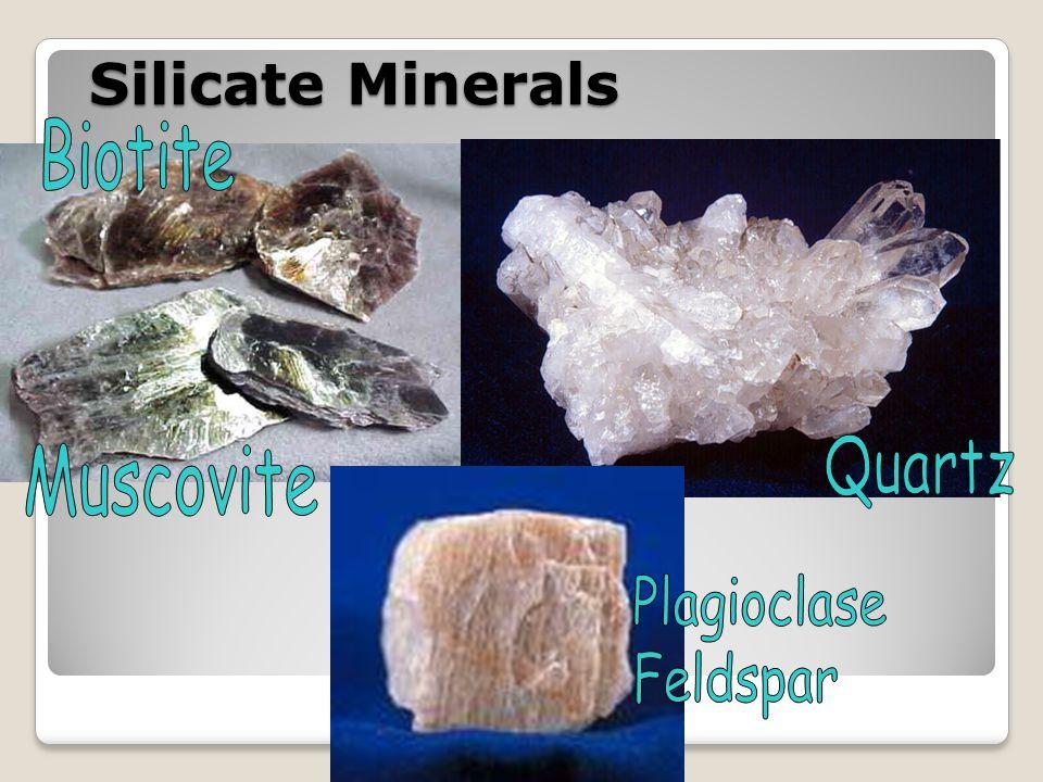 Silicate Minerals Biotite Quartz Muscovite Plagioclase Feldspar