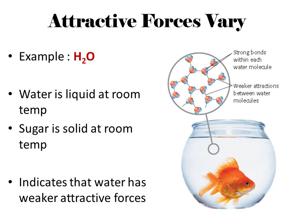 Attractive Forces Vary