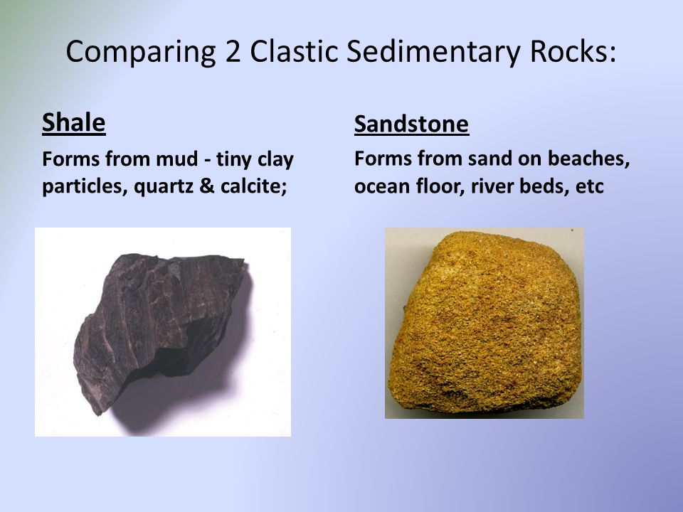 Comparing 2 Clastic Sedimentary Rocks: